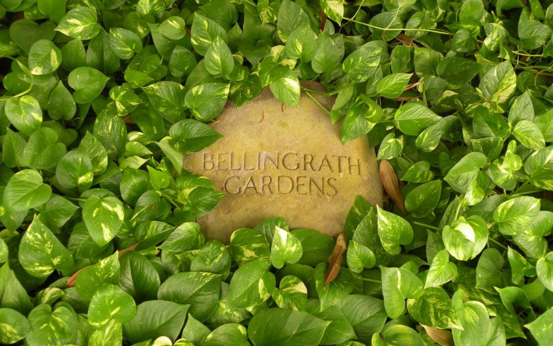 Touring Bellingrath Gardens
