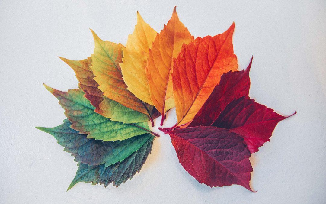 Blending the Seasons of Life